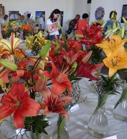 Výstava lilií v Rajhradském klášteře